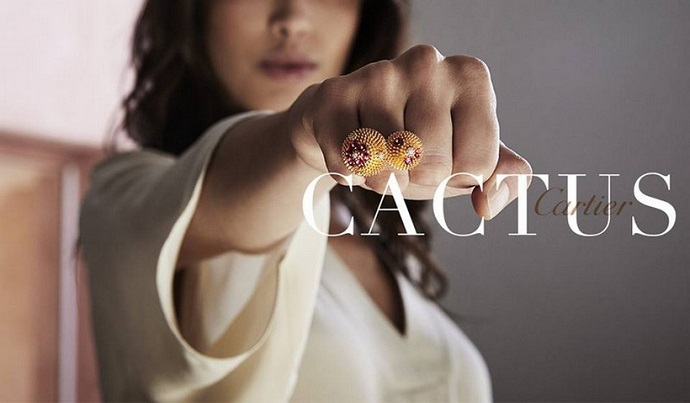 Meet The Sheer Beauty Of Live With Cactus de Cartier ➤ To see more news about fashion visit us at www.fashiondesignweeks.com #fashiontrends #fashiontips #celebritystyle #elisabethmoments #fashiondesigners @fashiondesignweeks @elisabethmoments Cactus de Cartier Meet The Sheer Beauty Of Live With Cactus de Cartier Meet The Sheer Beauty Of Live With Cactus de Cartier 1