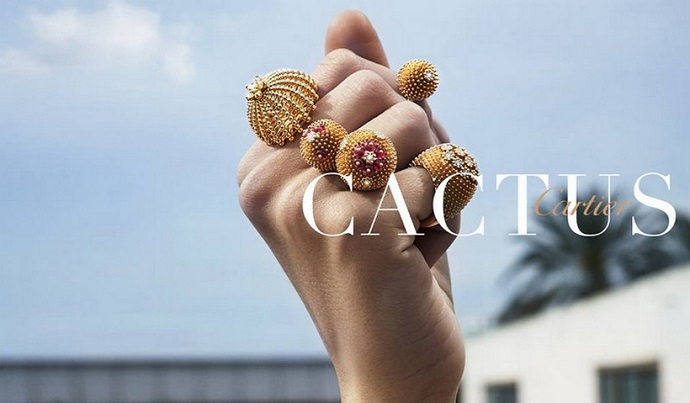 Meet The Sheer Beauty Of Live With Cactus de Cartier ➤ To see more news about fashion visit us at www.fashiondesignweeks.com #fashiontrends #fashiontips #celebritystyle #elisabethmoments #fashiondesigners @fashiondesignweeks @elisabethmoments Cactus de Cartier Meet The Sheer Beauty Of Live With Cactus de Cartier Meet The Sheer Beauty Of Live With Cactus de Cartier 2