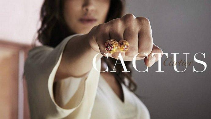 Meet The Sheer Beauty Of Live With Cactus de Cartier